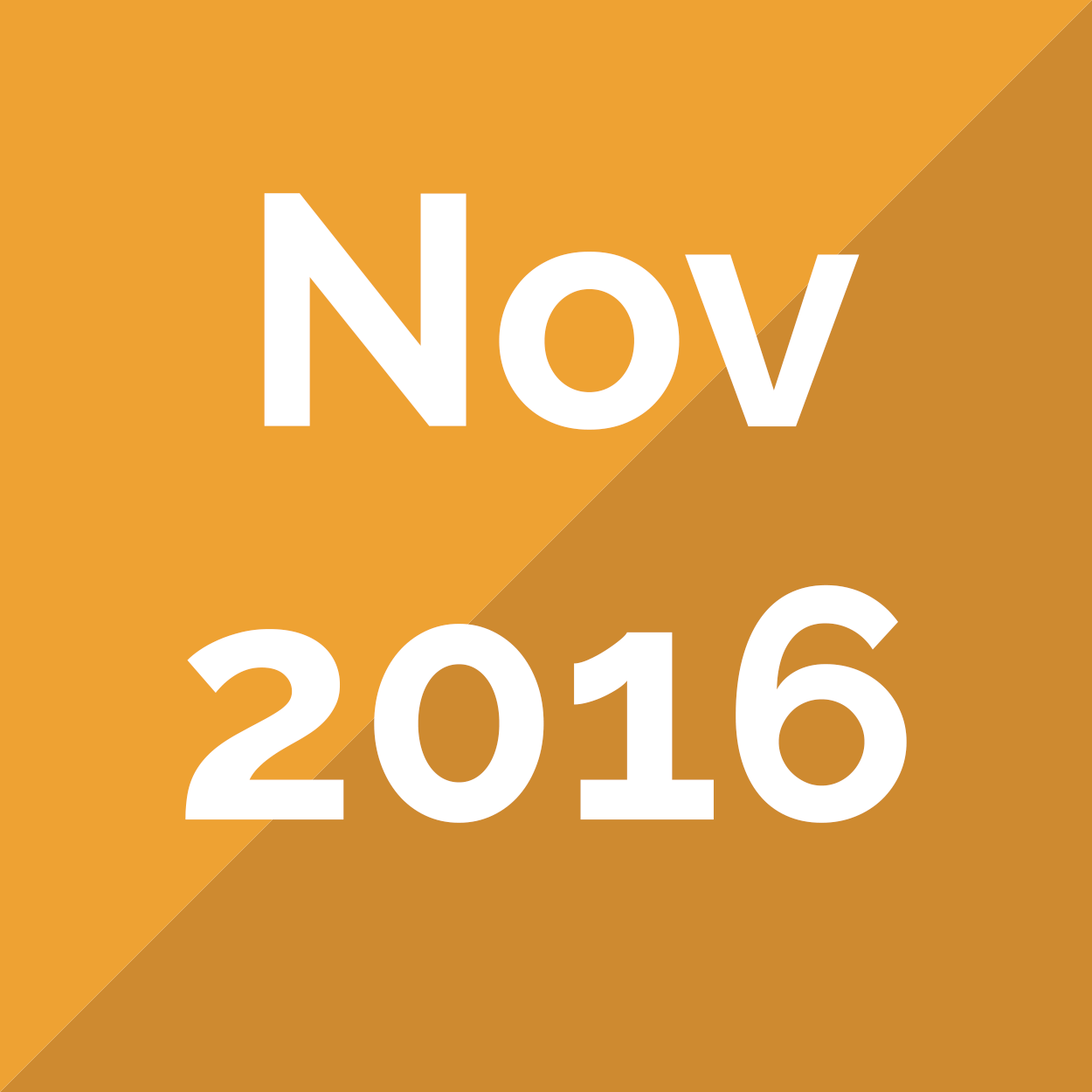 November 2016 Newsletter - The NIA