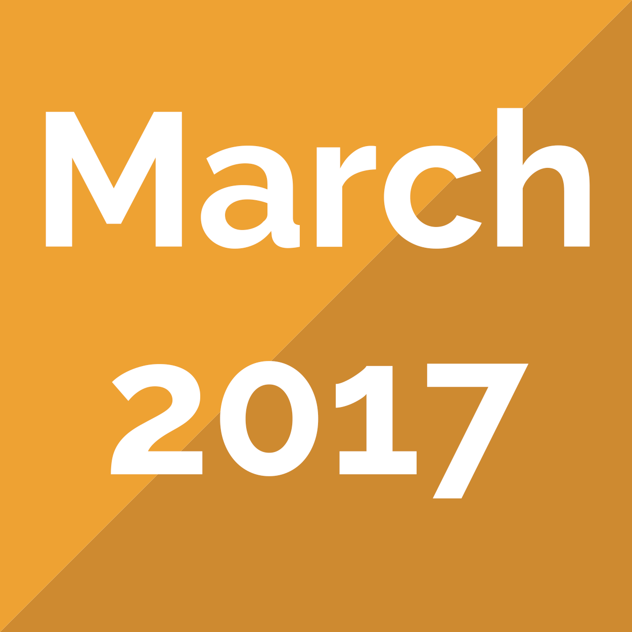 March 2017 Newsletter - The NIA