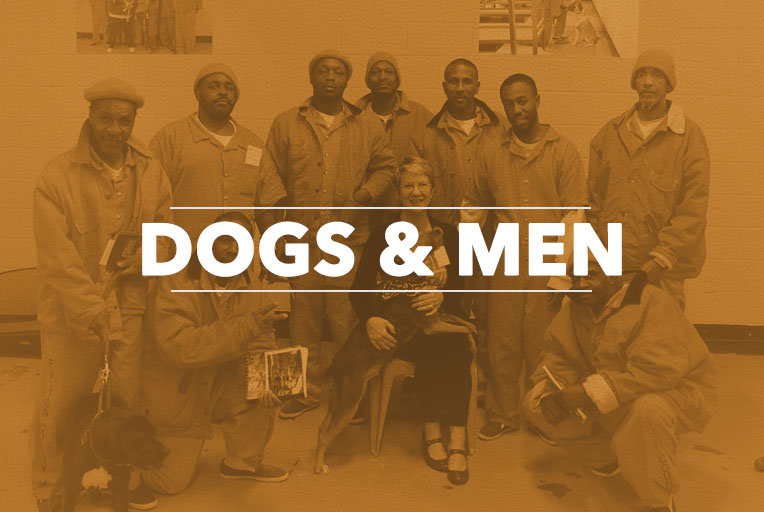 Dogs and Men - The NIA