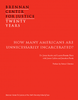 Review of Unnecessary Incarceration
